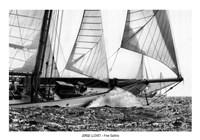 Free Sailing Fine Art Print