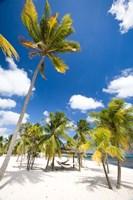 Southern Cross Club, Little Cayman, Cayman Islands, Caribbean by Greg Johnston - various sizes