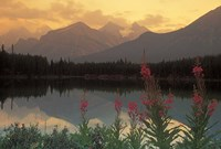 Alberta, Banff, Lake Herbert, Canadian Rockies Fine Art Print
