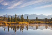 Canada, Alberta, Jasper National Park Scenic of Cottonwood Slough Fine Art Print