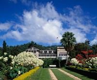 St James, Port of Spain, Trinidad, Caribbean by Paul Thompson - various sizes - $38.99