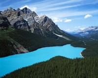 Peyto Lake, Banff National Park, Alberta, Canada Fine Art Print