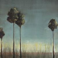 "Santa Monica by Terri Burris - 24"" x 24"""