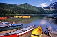 Cameron Creek, Wateron Lakes National Park, Alberta, Canada Fine Art Print