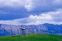 Windmills at Pincher Creek, Alberta, Canada Fine Art Print
