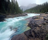 Mistaya River in Banff National Park in Alberta, Canada Fine Art Print