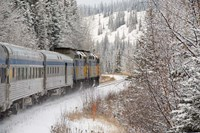 Via Rail Snow Train Between Edmonton & Jasper, Alberta, Canada Fine Art Print