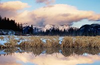 Vermillion Lake, Banff National Park, Alberta Fine Art Print