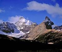 Alberta, Mt Saskatchewan, Banff NP Fine Art Print