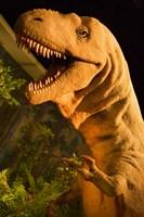 Royal Tyrrell Museum of Palaeontology, Drumheller, Alberta, Canada by Walter Bibikow - various sizes