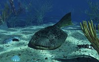 A Drepanaspis on the bottom of a shallow Devonian sea by Walter Myers - various sizes