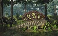An Edaphosaurus forages in a brackish mangrove like swamp Fine Art Print