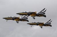 Republic of Korea Air Force Aerobatic Team by Ofer Zidon - various sizes - $47.49
