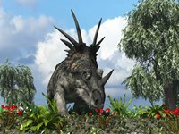 A Styracosaurus samples flowers of the order Ericales Fine Art Print