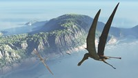 Species from the genus Anhanguera soar 105 million years ago over what is today Brazil by Walter Myers - various sizes