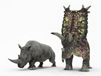 An adult Pentaceratops compared to a modern adult White Rhinoceros by Walter Myers - various sizes
