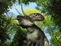 A Zuniceratops wanders a Cretaceous forest by Walter Myers - various sizes