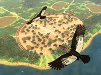 A pair of Andean Condors fly over an Amazonian village by Walter Myers - various sizes, FulcrumGallery.com brand