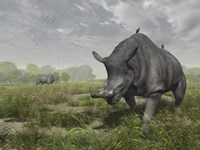 Brontotherium wander the lush late Eocene landscape by Walter Myers - various sizes