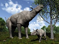 A Paraceratherium mother grazes on leaves and twigs of a poplar tree Fine Art Print