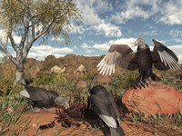 Pleistocene Black Vultures feed on carrion by Walter Myers - various sizes