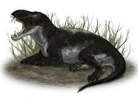 Pampaphoneus, a Genus of Dinocephalian Dinosaur Fine Art Print