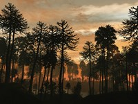 A Forest of Cordaites and Araucaria Silhouetted Against a Colorful Sunset by Walter Myers - various sizes
