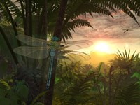 A Giant Meganeura with a 30-inch Wingspan Witnesses a Sunrise by Walter Myers - various sizes