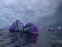 Portuguese Man o' War Swarm over the Surface of a Cambrian Ocean by Walter Myers - various sizes