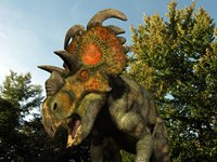 An Albertaceratops Wanders a Cretaceous Forest by Walter Myers - various sizes