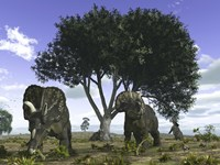 Nedoceratops Graze Beneath a Giant Oak Tree by Walter Myers - various sizes