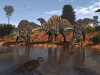 Ouranosaurus Drink at a Watering Hole while a Sarcosuchus Floats nearby by Walter Myers - various sizes