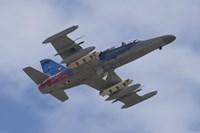 Czech Air Force Aero L-159T Advanced Light Combat Aircraft Fine Art Print