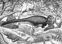 Black ink Drawing of Extinct Animals From the Hell Creek Formation Fine Art Print