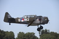 A T-6 Harvard Trainer of the Dutch Air Force Historic Flight Team by Timm Ziegenthaler - various sizes - $47.49