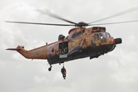 A German WS-1 Sea King during a Fast-roping Exercise by Timm Ziegenthaler - various sizes, FulcrumGallery.com brand