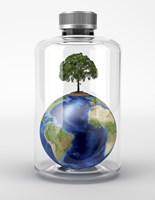 Planet Earth with a Tree on Top, inside a Glass Bottle Fine Art Print