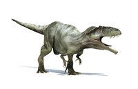 3D Rendering of a Giganotosaurus Dinosaur Fine Art Print