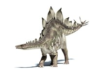 3D Rendering of a Stegosaurus Dinosaur by Leonello Calvetti - various sizes