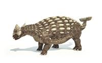 Ankylosaurus Dinosaur on White Background by Leonello Calvetti - various sizes