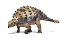3D Rendering of an Ankylosaurus Dinosaur by Leonello Calvetti - various sizes
