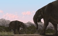 Two Deinotherium, an Extinct Animal of the Miocene Epoch Fine Art Print