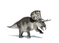 3D Rendering of a Zuniceratops Dinosaur by Leonello Calvetti - various sizes