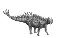 Pencil Drawing of Huayangosaurus Taibaii Fine Art Print
