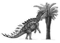 Pencil Drawing of Miragaia Longicollum Feeding on a Cycad Tree Fine Art Print
