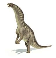 Amargasaurus Dinosaur in Dynamic Posture by Leonello Calvetti - various sizes
