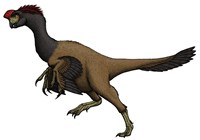 Citipati, an Oviraptorid from the Cretaceous Period by Vitor Silva images - various sizes - $47.99