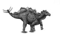 Pencil Drawing of Wuerhosaurus Homheni Standing on its Hind Legs Fine Art Print