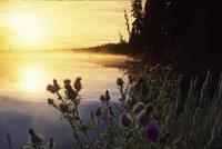 Lac Lejuene, Kamloops, British Columbia, Canada Fine Art Print