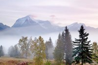 Canada, British Columbia, Mount Robson Park Sunrise on mountain by Jaynes Gallery - various sizes - $37.49